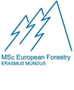MSc EF logo