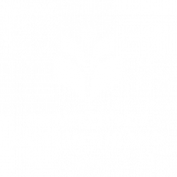 Master of Science in European Forestry